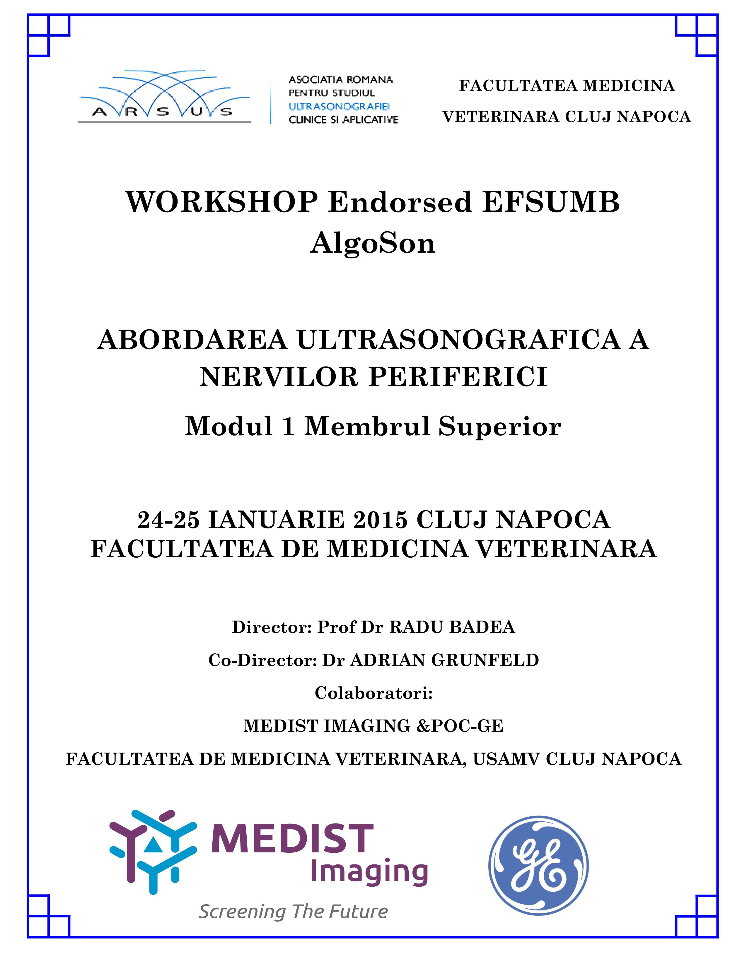 afis Workshop Endorsed EFSUMB AlgoSon 1 Cluj    24-25.01.15 1