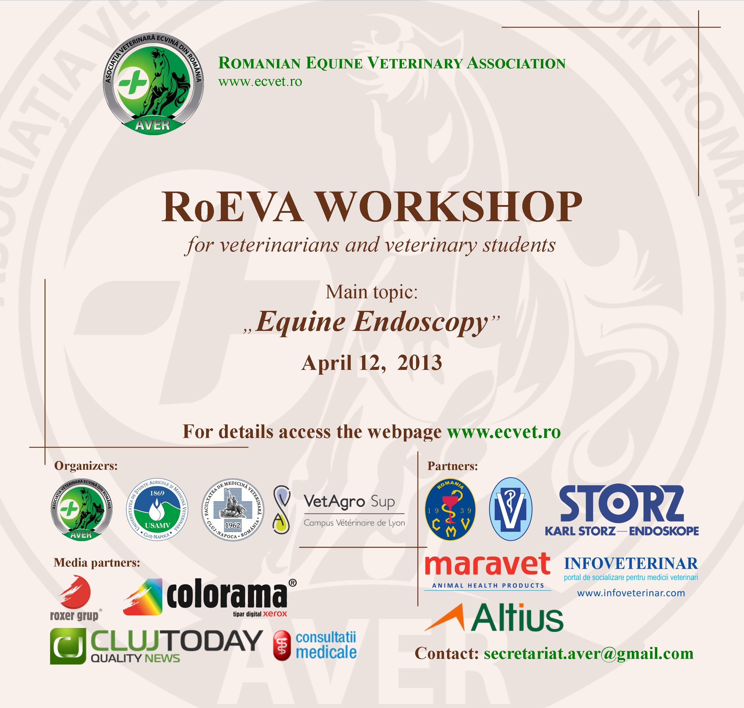 anunt workshop 2013 - eng